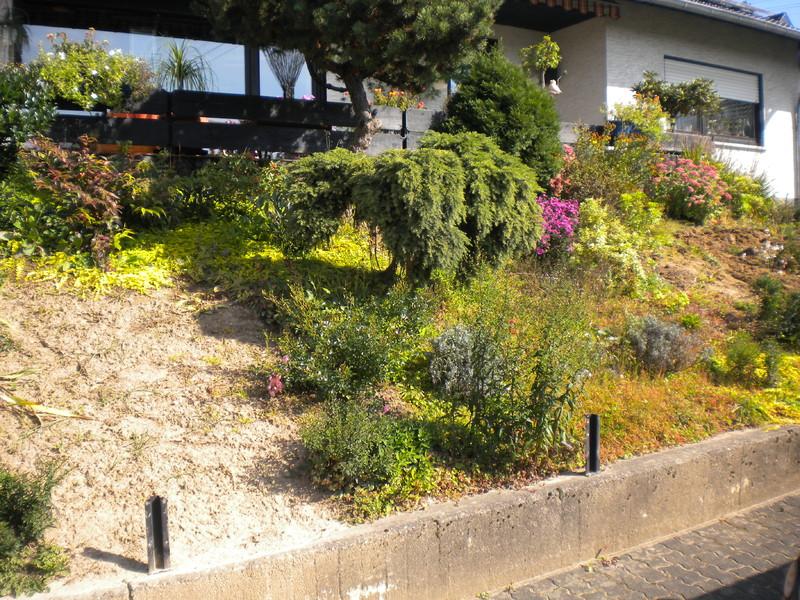 Gartengestaltung adam eitorf gartengestaltung for Gartengestaltung thuja